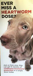 Pet Assure Clients
